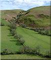 SN7947 : Pasture and moorland near Ystradffin, Carmarthenshire : Week 14