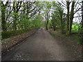 SD6710 : Old Hall Lane by Philip Platt