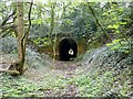 SK3918 : The north-west portal of Newbold tunnel : Week 15