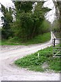 SU9515 : Looking south on the West Sussex Literary Trail by Shazz