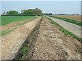 TF3605 : Dry dike on Cant's Drove near Guyhirn by Richard Humphrey