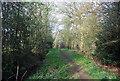 TQ0336 : Wey South Path by N Chadwick