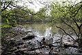 TQ2493 : Darlands Lake by Martin Addison