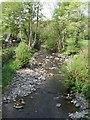 SN9391 : Afon Trannon upstream at Llawr-y-glyn by John M