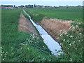 TF3607 : Dike on Long Drove by Richard Humphrey