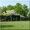 SO8995 : The green at Penn Bowling Club, Wolverhampton by Roger  Kidd