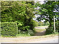 TM2866 : Footpath to the A1120 The Street &amp; Clay Hill by Adrian Cable