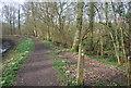 TQ0134 : Footpath junction, Wey South Path by N Chadwick