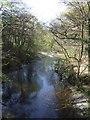 SJ0315 : River Vyrnwy upstream at Pont Llogel by John M