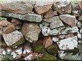 NT9608 : Stone wall, Biddlestone by Stephen Richards