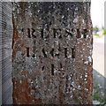 C0532 : Milestone near Creeslough [detail] by Rossographer