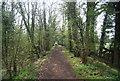 TQ0233 : Wey South Path heading south by N Chadwick