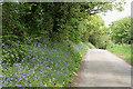 SX1173 : Blisland: lane to Metherin by Martin Bodman