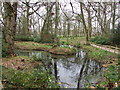SY8582 : Pond, Lulworth Castle by Lorraine and Keith Bowdler