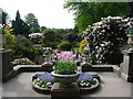 SJ8959 : Spring at Biddulph Grange by Marion Haworth