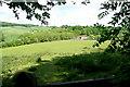 SU7990 : Towards Muswell Farm by Graham Horn