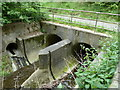 SK4566 : River Doe Lea tunnel under the A617 embankment by Andrew Hill