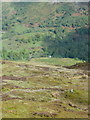 NN7046 : Northern slopes of Creag a' Mhadaidh by Russel Wills