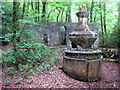 SX1356 : Fountain in Tivoli Park Lerryn by Rod Allday