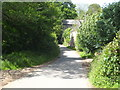 SX3874 : The lane leading from Luckett to Higher Hampt by Rod Allday