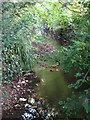 TQ4368 : The Kyd Brook south of Pond Wood (4) by Mike Quinn
