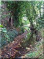 TQ4368 : The Kyd Brook south of Pond Wood (7) by Mike Quinn