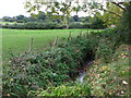 TQ4468 : The Kyd Brook south of Tongs Farm (2) by Mike Quinn