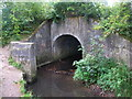 TQ4468 : The Kyd Brook emerging from a culvert under railway lines west of St. Mary Cray Junction by Mike Quinn