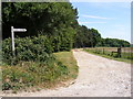 TG0328 : Footpath to Abbey Farm & entrance to Woodland Cottages by Adrian Cable