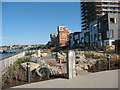 TQ3979 : City Peninsula - new garden by Stephen Craven