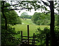 SK4678 : Stile for footpath exiting High Wood by Andrew Hill