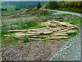 NN7623 : New fence posts awaiting erection on Dun More, Comrie by Anthony O'Neil