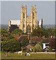 TA0339 : Beverley Minster from the Westwood by Paul Harrop