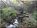 TQ4366 : The Kyd Brook - Main Branch and a drain feeding it, on Crofton Heath by Mike Quinn