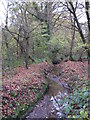 TQ4366 : The Kyd Brook - Main Branch, in Clay Wood (4) by Mike Quinn