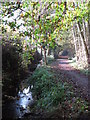 TQ4466 : The Kyd Brook - East Branch, west of Monks Way, BR5 (4) by Mike Quinn