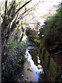 TQ4466 : The Kyd Brook - East Branch, west of St. Thomas' Drive, BR5 (3) by Mike Quinn