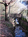 TQ4466 : The Kyd Brook - East Branch, west of St. Thomas' Drive, BR5 (5) by Mike Quinn