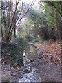 TQ4466 : The Kyd Brook - East Branch, on Gumping Common (4) by Mike Quinn