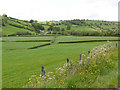 SN9479 : Fields in the Nant Cae-garw valley by Nigel Brown