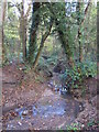 TQ4466 : The Kyd Brook - East Branch, on Gumping Common (10) by Mike Quinn