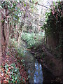 TQ4465 : The Kyd Brook - East Branch, west of Clareville Road, BR6 (2) by Mike Quinn