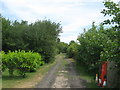 TR3260 : Footpath near houseboat  gardens on River Stour by David Anstiss