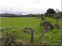 B9029 : Ardsmore Townland by Kenneth  Allen