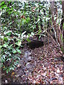 TQ4264 : Stream feeding the Ravensbourne/Quaggy system, south of Beech Dell, BR2 (2) by Mike Quinn