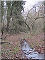 TQ4264 : Stream in Lake Wood (6) by Mike Quinn
