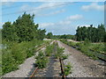 SK4473 : Disused coal depot railway line by Andrew Hill