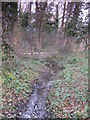 TQ4465 : Minor tributary of the Kyd Brook, Darrick Wood (4) by Mike Quinn