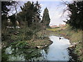 TQ4465 : Small pond on a minor tributary of the Kyd Brook, Darrick Wood (2) by Mike Quinn