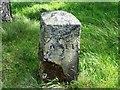 NS8467 : Hillend Reservoir, marker stone No. 44 by Robert Murray